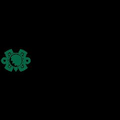 2019 World Golf Championships - Mexico Championship